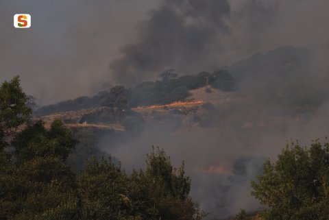 incendio boschivo [480x321]