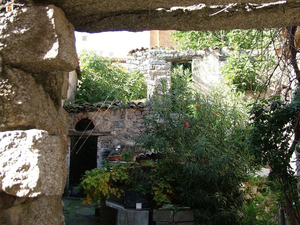 Giardino Di Una Casa sardegna digitallibrary - immagini - orotelli, giardino di